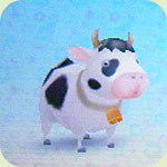 Animal cow2