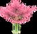 Royal Herb LOH