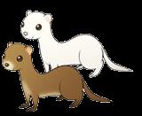 Weasels (ToT)