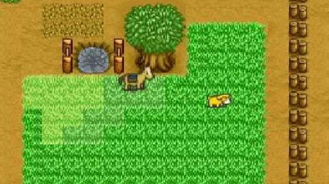Harvest Moon Snes - Popularity Ending