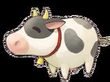 Cow (SV)