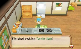 Cooking Recipes Anb The Harvest Moon Wiki Fandom