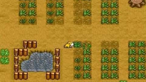 Harvest Moon Snes - Potatoes Ending
