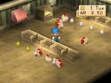 Chicken Coop (BTN)