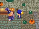 Pumpkin Festival (MM)