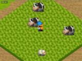 Sheep (HM64)