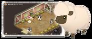 Sheep Dor