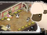 Sheep (Dor)