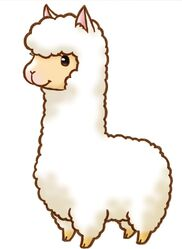 Harvest moon alpaca