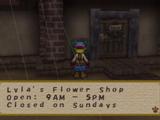 Lyla's Flower Shop (STH)