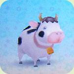 Animal cow3