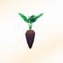 Brown-carrot