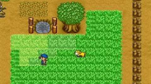 Harvest Moon Snes - Ellen Ending