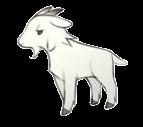 Goat (AP)