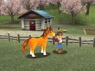 Awlhorse2