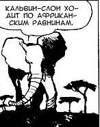 Кельвин-слон