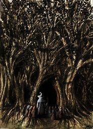Mirkwood - entrance