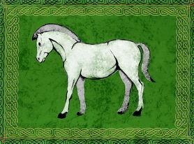 Cavallo bianco in campo verde