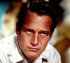 Portal Paul Newman