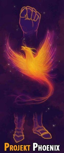 Phoenixhinweis4