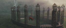 Quidditch pitch 1