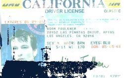 Adam's ID