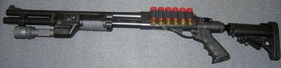 Strahm's shotgun