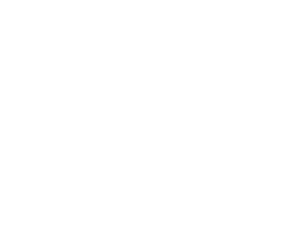 Team Cherry Logo