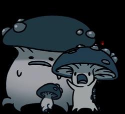 Fungals