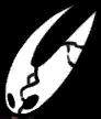 Hornet Corpse