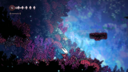 Coral Forest Trailer