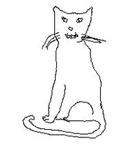 Medicine cat female12