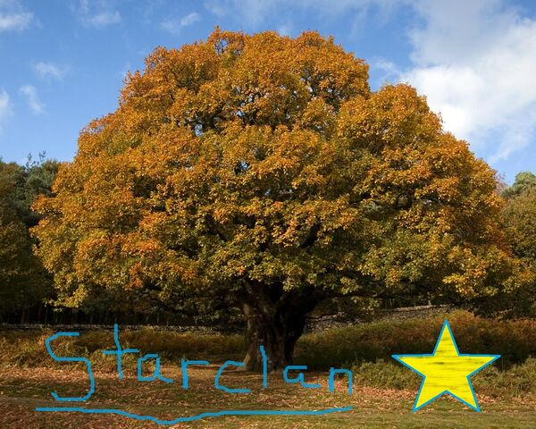 File:Oak-tree-Starclan.jpg
