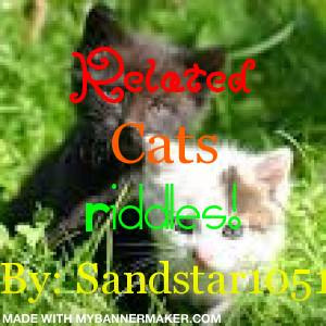 Related cats Riddles