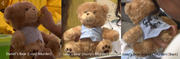 Breda's Teddy Bears