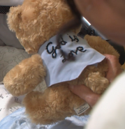 Isaac's Bear (Harry's Murder) -Back-