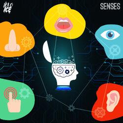 Holo Ice - Senses