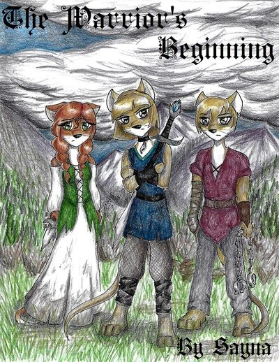 The Warrior's Beginning cover