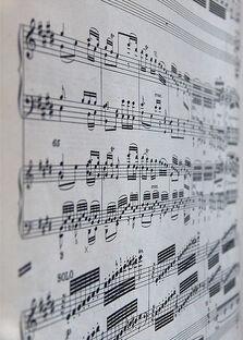 Beethoven close-up