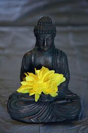 Peaceful Meditation free creative commons