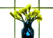 Backlit vase