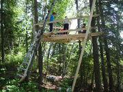 Tree house - 2009-06-28 2-40-11 PM 0089