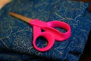 Pink Scissor 7-9-09 -- IMG 8313