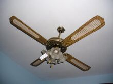 Ceiling Fan With Cane Blades