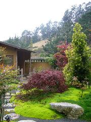 Zen Tea Garden