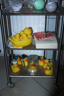Rubber Duckies in my bath
