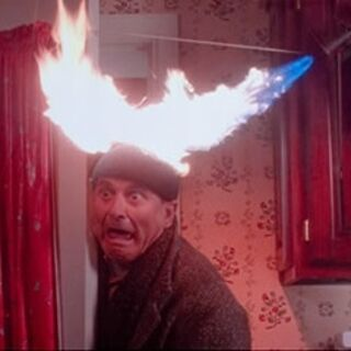 Harry Lyme Home Alone