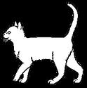 Medicine Cat Apprentice.short
