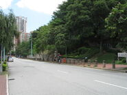 Yuen Long Park BT 20130602-1