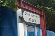 Chung Yat Street 2016 (4)